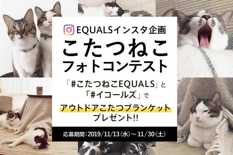 EQUALS公式Instagramで「こたつねこフォトコンテスト」を開始